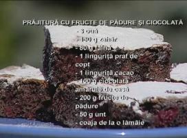 Prajitura cu fructe de padure si ciocolata