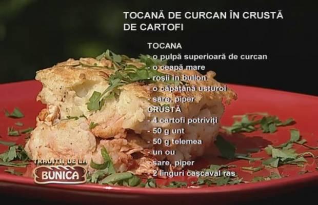 Tocanita de curcan  in crusta de cartofi