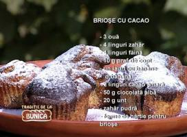 Briose cu cacao