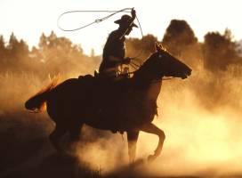 Cele mai bune westernuri din istoria cinematografiei