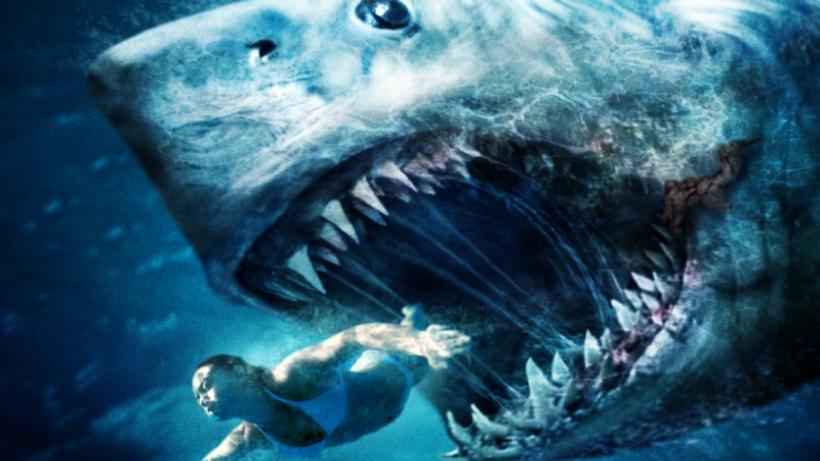 Saptamana rechinilor