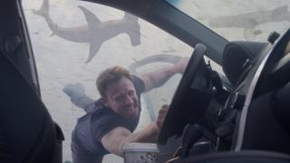 Invazia rechinilor: Florida