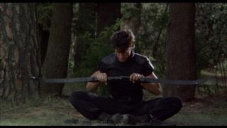 American Ninja: Anihilarea