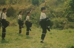 Ultimul tigru Shaolin