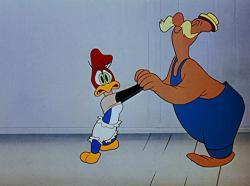 Ciocanitoarea Woody