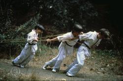 Micutii Ninja
