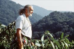Vraciul din jungla