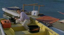 Malibu: Atacul rechinilor